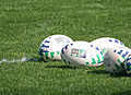 2007 Rugby World Cup balls.jpg
