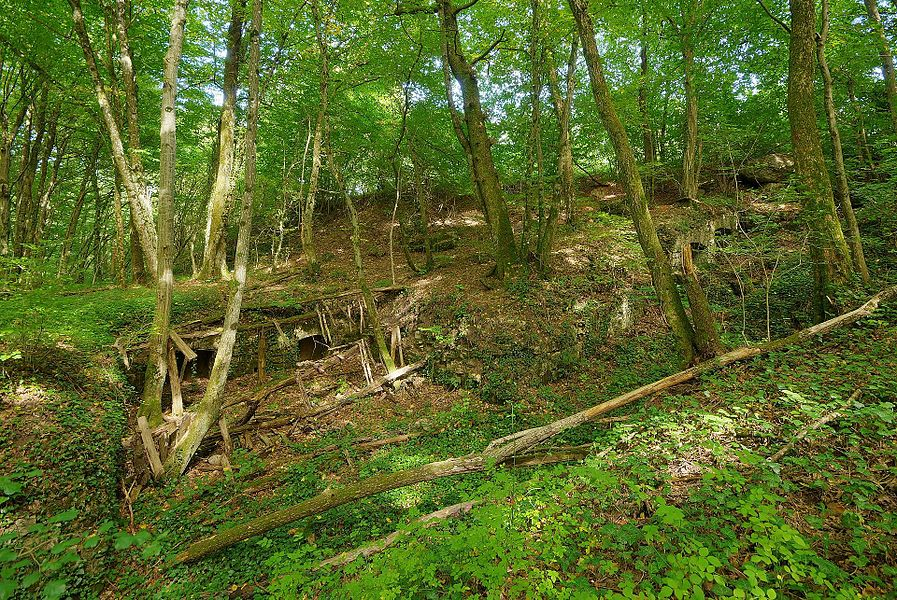 This file was uploaded  with Commonist.         This photograph was taken with a Nikon D300.    Batterie de Bromont (HDR).