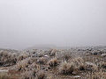 2014-12-17 09 45 11 Freezing fog in Elko, Nevada.JPG