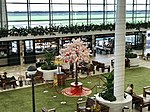 2018 Chinese New Year at Brisbane International Terminal level 4 Departure.jpg