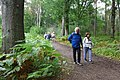 2019-08-17 Hike Hardter Wald. Reader-26.jpg