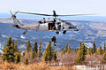 210th Rescue Squadron - HH-60G Red Flag Alaska.jpg