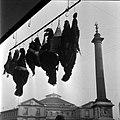 24.12.1963. place Dupuy les volatiles. (1963) - 53Fi3165.jpg