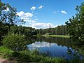 3065. Сосновка. Озеро Красивое.jpg