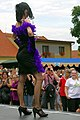 6.8.16 Sedlice Lace Festival 137 (28778956366).jpg