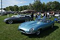61 & 62 Jaguar E-Type (8942193834).jpg