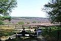 6991 Rheden, Netherlands - panoramio (6).jpg
