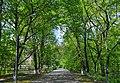 71-101-5005 Cherkasy First Hospital park DSC 9438.jpg