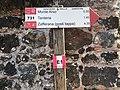731 cartello Etna.jpg