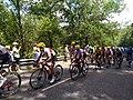 8e étape Tour de France 2019 - col de la Croix-Paquet - Peloton 1.jpg