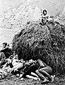 Aльплагерь «Безенги» 78 (106) Сенокос в деревне.jpg