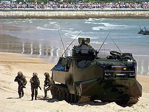 Spanish Navy Marines - Spanish Navy Marines deploying from an AAV-7 during an exhibition on Sardinero beach in Santander, in celebration of Armed Forces Day (Dia de las Fuerzas Armadas) in 2009.