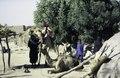 ASC Leiden - van Achterberg Collection - 1 - 218 - Un homme et un garçon avec des chameaux, des ânes et une tente. Un arbre vert, des maisons rectangulaires - Léré, Tombouctou, Mali - 9-29 novembre 1996.tif