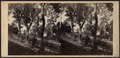A View near Garrison's, looking North, by E. & H.T. Anthony (Firm).png