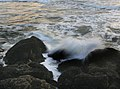 A photographer between waves and mussels 4.jpg