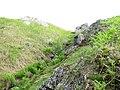 A rocky hillside valley - geograph.org.uk - 467029.jpg