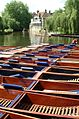 A row of punts, Cambridge (70523484).jpg