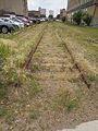 Abandoned rail line.jpg