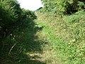 Ackling Dyke (Roman Road) - geograph.org.uk - 208473.jpg