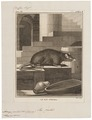 Acomys perchal - 1700-1880 - Print - Iconographia Zoologica - Special Collections University of Amsterdam - UBA01 IZ20500097.tif
