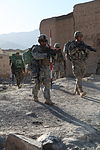 Airborne soldiers conduct Operation Purge DVIDS324045.jpg