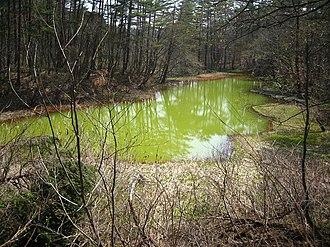 Goshiki-numa - Image: Aka numa Pond
