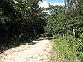 Alameda Cândido Brasil Moro - Palma - Santa Maria, foto 08 (sentido N-S).jpg - panoramio.jpg