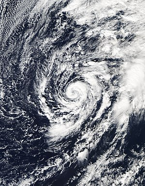 Subtropical cyclone - Subtropical Storm Alex in January 2016
