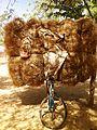 Aliment bétail (8573652607).jpg