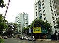 Alipore Road view (1).jpg