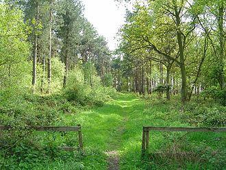 Allerthorpe Common - Western entrance to Allerthorpe Common