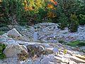 Alpine Garden (Montreal Botanical Garden) 09.jpg