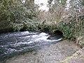 Alresford - Footbridge - geograph.org.uk - 1616658.jpg