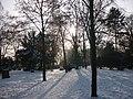 Alter Friedhof, 01.2010 - panoramio - David M..jpg