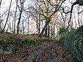 Alum Scar wood - panoramio (2).jpg