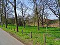 Am Wasserwerk Pirna 118711370.jpg