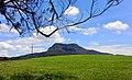 Ambewela scenery.jpg