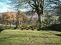 Ancient Walling, Cloutsham - geograph.org.uk - 415244.jpg
