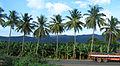 Andhra Pradesh - Landscapes from Andhra Pradesh, views from Indias South Central Railway (119).JPG