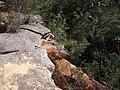 Anice Falls - panoramio (1).jpg