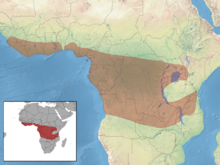 Anomalurus derbianus distribution (colored).png