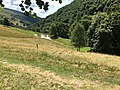 """Another """"bolla"""" along the way between Alpe d'Orimento and Monte Generoso.jpg"""