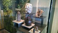 Antropología - Museo Nacional de Antropología ovedc wikimania 048.jpg