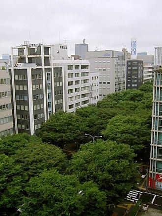 Zelkova serrata - Image: Aoba dori Ave 2