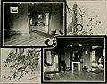 Arbutus (1901) (14781518064).jpg