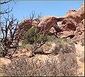 Arches NP, Utah 8-25-12 (7993186750).jpg