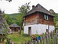 Arilje-radosevo-7899.jpg