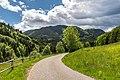 Arnoldstein Krainberg lokale Zufahrtsstraße 25052020 9101.jpg