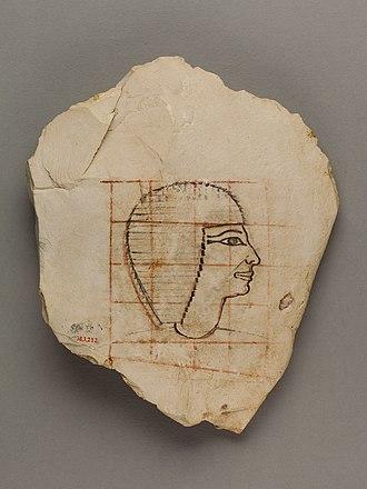 Senenmut - Image: Artist's Gridded Sketch of Senenmut MET 36.3.252 EGDP013666