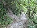 Arundel, Mill Hanger - geograph.org.uk - 1508819.jpg
